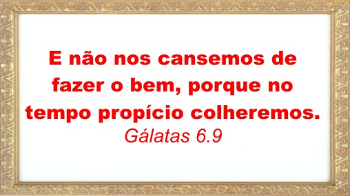 frase2311